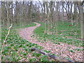 TQ4452 : Path to an Iron Age hillfort by Marathon