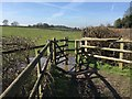 SJ8050 : Audley: kissing gate on footpath Audley 31 by Jonathan Hutchins