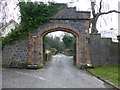 D3114 : Archway, Glenarm Forest by Kenneth  Allen