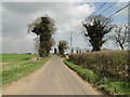TM3799 : Hardley Road to Chedgrave by Adrian S Pye
