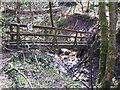SJ9993 : Footbridge in Tom Wood by Stephen Burton