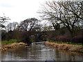 SJ8965 : Macclesfield Canal:  Railway bridge by Dr Neil Clifton