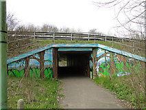 TM1244 : A splash of colour on the underpass by Adrian S Pye