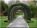 SU8612 : Pergola, West Dean Gardens by Alan Hunt