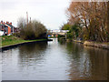 SJ7164 : Trent and Mersey Canal:  Cledford Bridge No 166 by Dr Neil Clifton
