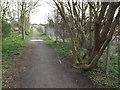 NZ3661 : Bridleway near East Boldon by Malc McDonald