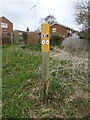 SP9959 : Footpath SIgn at Sharnbrook by PAUL FARMER