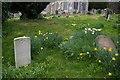 TQ6652 : St Michael's churchyard, East Peckham: war grave by Christopher Hilton