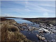 NY7831 : River Tees by Michael Graham