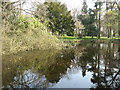SU9196 : The pond at Finchers House, Beamond End by David Purchase