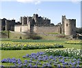 NU1813 : Spring bulbs at Alnwick Castle, Easter Sunday by Rich Tea