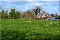 SJ7760 : Manor House Farm by David Martin