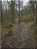 SD3898 : Heading up the bridleway at Belle Grange by Karl and Ali