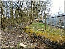 SJ9694 : Old platform at Godley Junction by Gerald England