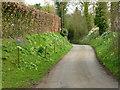 SK6921 : Ostler Lane, Saxelbye by Alan Murray-Rust