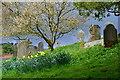 SD3598 : Hawkshead churchyard by David Martin