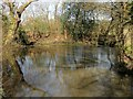 TQ3124 : Pond, Blunts Wood and Paiges Meadow Local Nature Reserve by Simon Carey