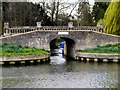 SU9877 : Bridge over Cut to Boathouse at Albert Cottage by David Dixon