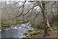 NJ5340 : River Deveron, Huntly by Richard Webb