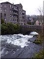 SD3584 : The River Leven at Backbarrow by Rod Allday