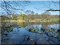 TQ2997 : Lake, Trent Park, Cockfosters, Hertfordshire by Christine Matthews