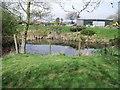 SK4519 : Pond at Fishpool Grange by Ian Calderwood