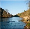 SO5514 : The River Wye near Biblins footbridge by John Winder