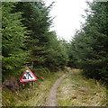 NY6295 : Roadworks on the Deadwater Trail, Kielder Forest by Rich Tea