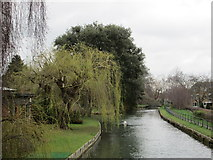 TL3706 : New River Walk, Broxbourne by Peter S