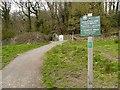 SD5831 : Path into Boilton Woods by David Dixon