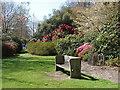 SU9769 : Valley gardens, Windsor Great park by Alan Hunt