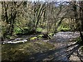 SX3078 : River Inny at Ruse's Mill by Derek Harper