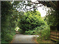 SP2382 : Maxstoke Lane becomes a footpath, going north out of Meriden by Robin Stott