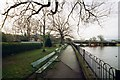 SE2045 : Tittybottle Park and the River Wharfe by John Winder
