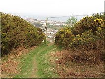 J3630 : Private path leading to the Tallybrannigan area of Newcastle by Eric Jones