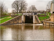 SE1039 : Bingley Three-Rise Locks by David Dixon