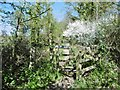 SZ4398 : Exbury, kissing gate by Mike Faherty