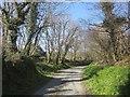 SX2384 : Lane from Trespearne by Derek Harper