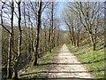 SK0698 : Longdendale Trail by Steve  Fareham