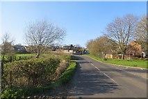 ST5038 : Butleigh Road, Glastonbury by Richard Webb