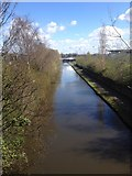 SJ8798 : Canal by National Cycling Centre by Dave Thompson
