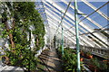 SJ6780 : The Vinery at Arley Hall by Jeff Buck