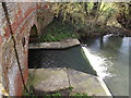 TM1573 : Weir on the River Dove at Abbey Bridge by Adrian Cable