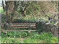 SS8278 : Bench beside Zig-zag Lane by eswales