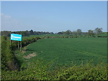 NZ0565 : Crop field near the A69 by JThomas