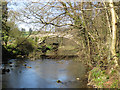 NZ7805 : River Esk flows under Beggar's Bridge by Pauline E