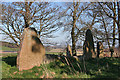 NJ7105 : Sunhoney Recumbent Stone Circle (4) by Anne Burgess