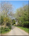 SX2674 : Lane past Blackcoombe Farm by Derek Harper
