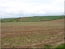 SY0882 : Farmland south of Otterton by David Purchase