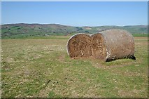 SO2455 : Bales on Hergest Ridge by Philip Halling